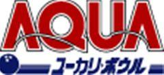 ユーカリ・ボウル 【4/29・祝】前売り券販売中!春のスペシャルプロチャレンジマッチ【Pリーガー????】
