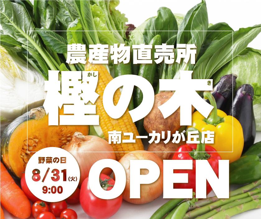 【8/31(火)】 樫の木 南ユーカリが丘店 OPEN!